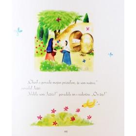 Biblia pre malých kamarátov (Sally Ann Wright)