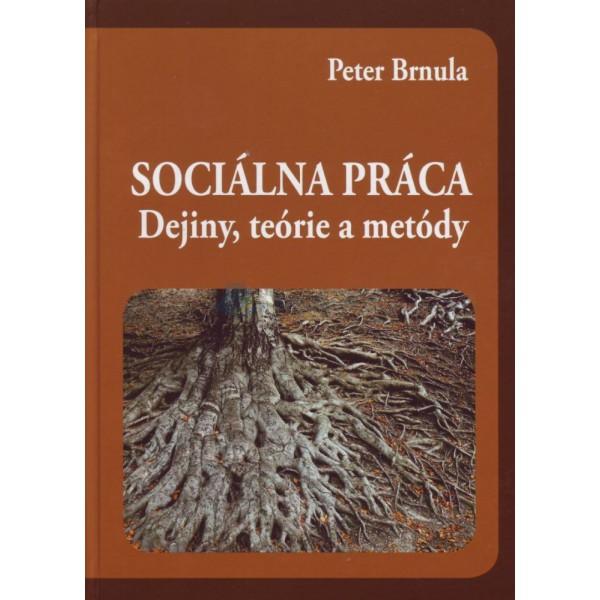 Sociálna práca (Peter Brnula)